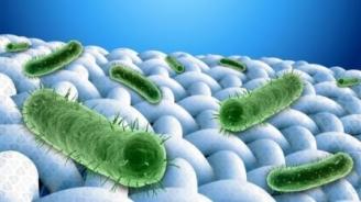 Les technologies antimicrobiennes au profit du monde du textile